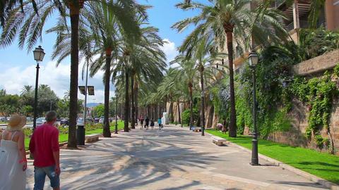 Palma de Mallorca Majorca, Balearic Islands, Spain Stock Video Footage