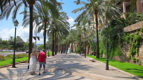 Palma de Mallorca Majorca, Balearic Islands, Spain Stock Video Footage