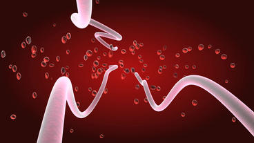 Red blood cells in artery Stock Video Footage