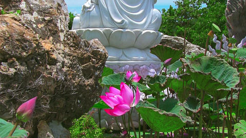 Buddha and lotus on blue sky background Stock Video Footage