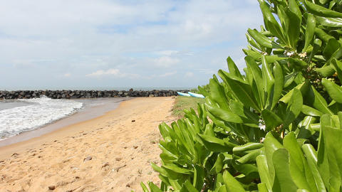 Tropical beach, Sri Lanka Stock Video Footage