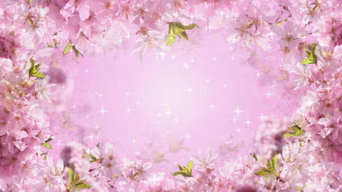 Pink Blossoms Animation