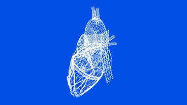 Rotation of heart.love,medical,health,pulse,medicine,care,heartbeat,Grid,mesh,sk Animation