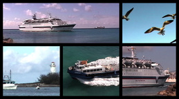 Boats  seagulls montage Footage