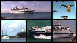 Boats  seagulls montage Stock Video Footage