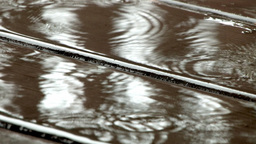 Rain drops into a puddle creating ripples Stock Video Footage