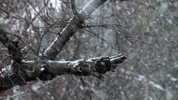 snowing slow motion Footage