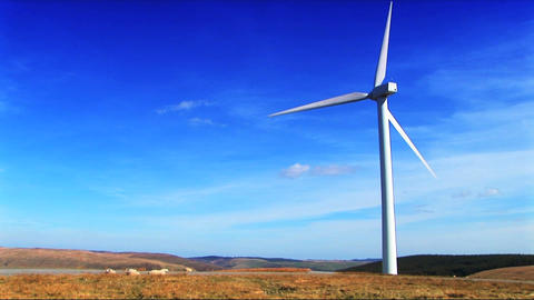 Wind power farm producing energy in the environment Footage