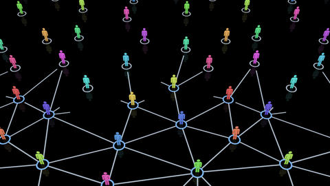 Social Network Connection B 5m 2 Animation