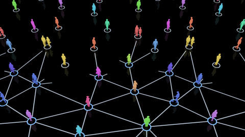 Social Network Connection C 5m 2 Animation