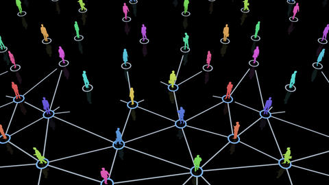 Social Network Connection D 5m 2 Animation