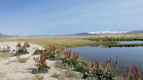 Mountain Lake Dayan Nuur Stock Video Footage