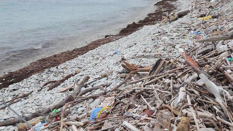 Trash on the beach Footage