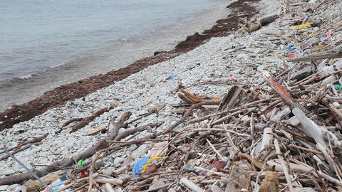 Trash on the beach Stock Video Footage