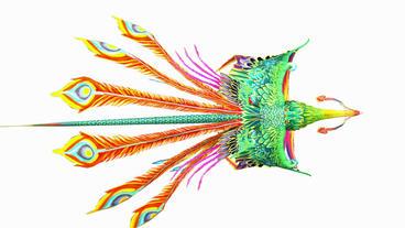 Flying Phoenix.bird,design,art,wing Animation