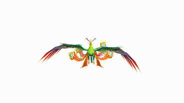 Flying Phoenix.bird,design,art,wing Stock Video Footage