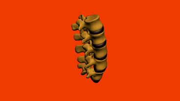 model of spine,medicine,health,human,skeleton Stock Video Footage