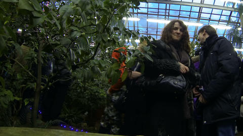 Visitors in the greenhouse of Botanical garden Stock Video Footage