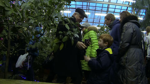 Visitors In The Greenhouse Of Botanical Garden stock footage