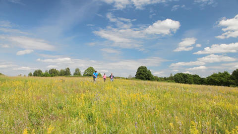 Happy family walking in the summer field Stock Video Footage