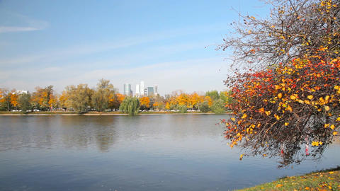 Novodevichy Convent pond Stock Video Footage