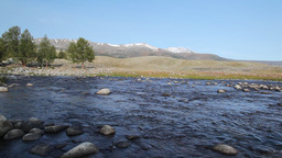 Rapid mountain river in Mongolian Altai ( Dayan ) Stock Video Footage