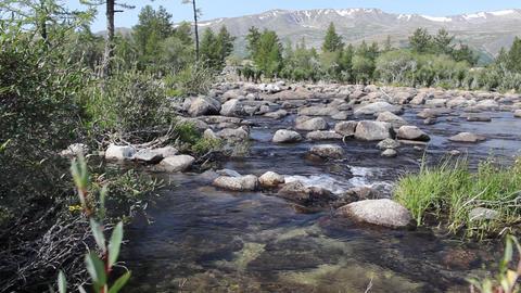 Rapid mountain river in Mongolian Altai ( Dayan ) Footage