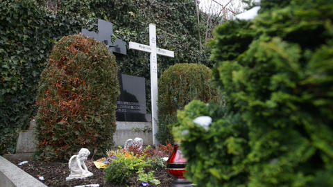 Anneliese Michel grave dolly shot 10923 Stock Video Footage