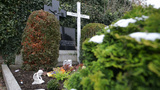 Anneliese   Michel  Grave  Dolly  Up  Shot 10934   stock footage