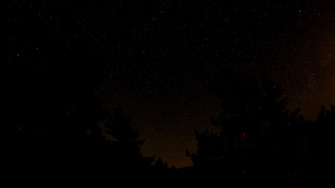 Time lapse of the night sky with clouds and stars passing by behind a forest Footage