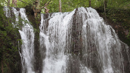 Forest waterfall Stock Video Footage