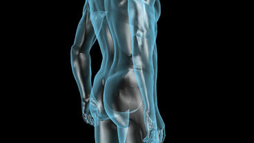 3D transparent human nude body Stock Video Footage