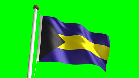 Bahamas flag Stock Video Footage
