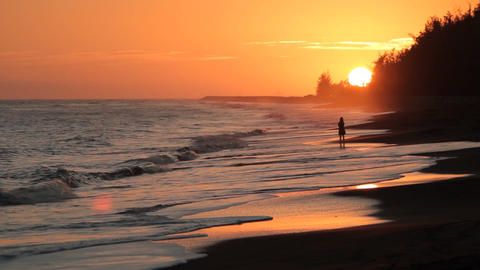 Sunset girl on Hawaii Beach QT Stock Video Footage