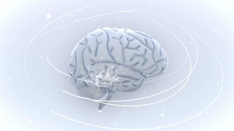Brain 2 A 1 Wm HD Stock Video Footage