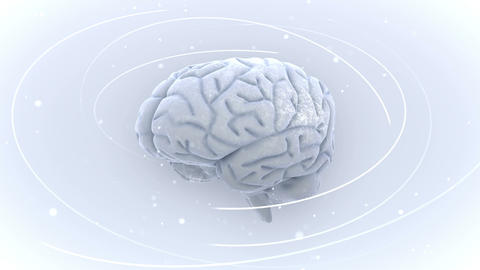 Brain  2  A 1 Wm   HD stock footage
