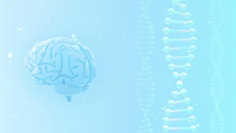 Brain 2 A 2 Wm HD Stock Video Footage