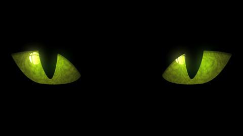 Cat Eyes Blinking Loop CG動画素材