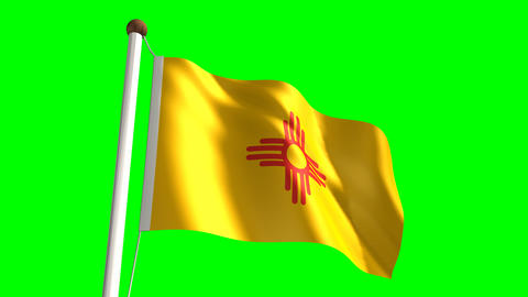 New Mexico flag Stock Video Footage