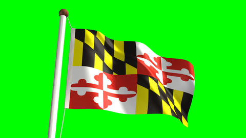 Maryland flag Stock Video Footage