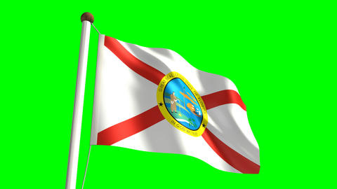 Florida flag Stock Video Footage