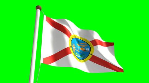 Florida flag Animation