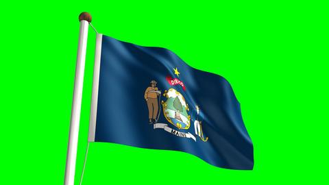 Maine flag Stock Video Footage