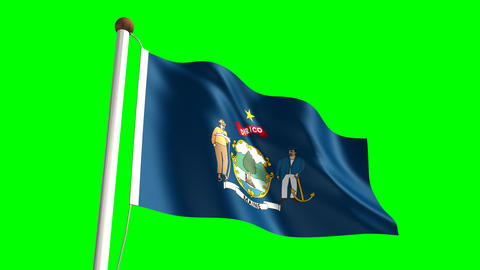 Maine Flag stock footage