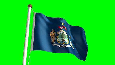 Maine flag Stock Video Footage