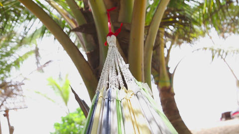 Hammock Stock Video Footage