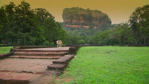 Sigiriya rock Stock Video Footage