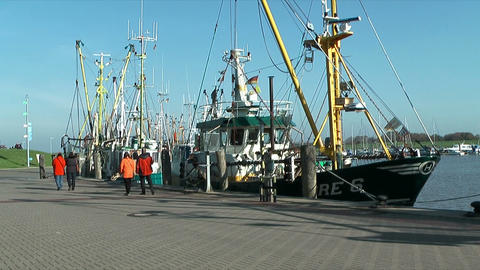 shrimp boats in harbour Stock Video Footage