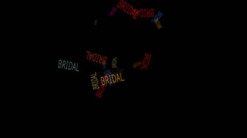 BRIDAL Stock Video Footage