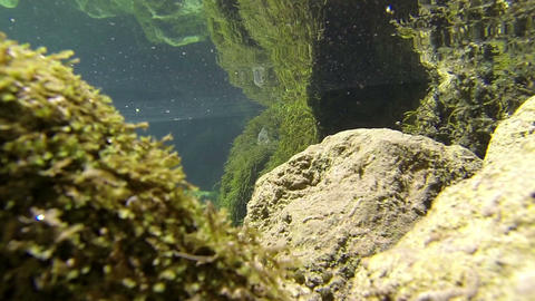 Underwater mountain river Footage